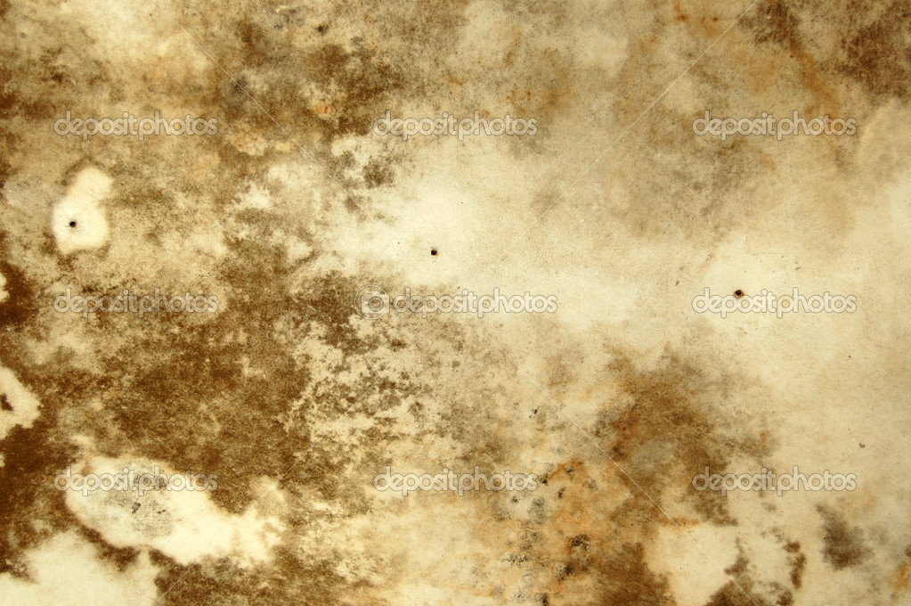 Water stains and mold growth on the ceiling of an abandoned house. — Stock Photo #1988546