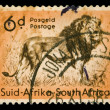 African lion stamp — Stock Photo
