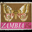Royalty-Free Stock Photo: Zambia butterfly stamp