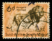 African lion stamp — Foto de Stock