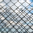 wire mesh&quot — Stock Photo #2598212