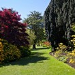 Glorious English Garden - Stock Photo