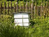 Beehive — Stock Photo