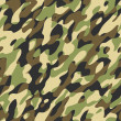 Camouflage - Stock Photo