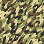 Camouflage — Stock Photo #1647592