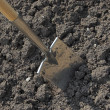 Stock Photo: Digging