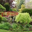 English garden — Stock Photo #1733288