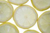 Backlit lemon — Stock Photo
