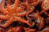 Marinated baby octopuses — Stock Photo