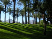 Palm Springs — Stock Photo