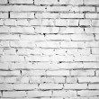 Texture of brick wall — Stock Photo #1586226