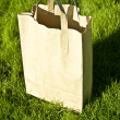 Paper bag — Stock Photo