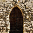 Gothic door with a lattice — Stock Photo