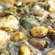 Stock Photo: Water flowing in stones