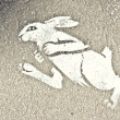 Hare drawn on asphalt — Stock Photo