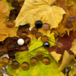 Glass balls on autumn foliage — Stock Photo
