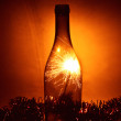 Bottle and Bengalese candle — Stock Photo