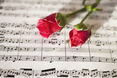 Pink roses on musical notes — Stock Photo
