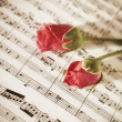 Two Pink roses on musical notes - Stock Photo