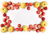 Yellow and red apples — Stock Photo