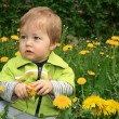 Child with the dandelion — Stock Photo #1624636