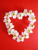 Coração romântico de narciso — Foto Stock