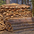 Pile of wood — Foto Stock