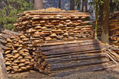 Pile of wood — Stock Photo