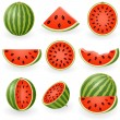 Watermelon — Stockvector #1643392