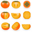 Stock Vector: Persimmon