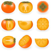 Persimmon — Stock Vector