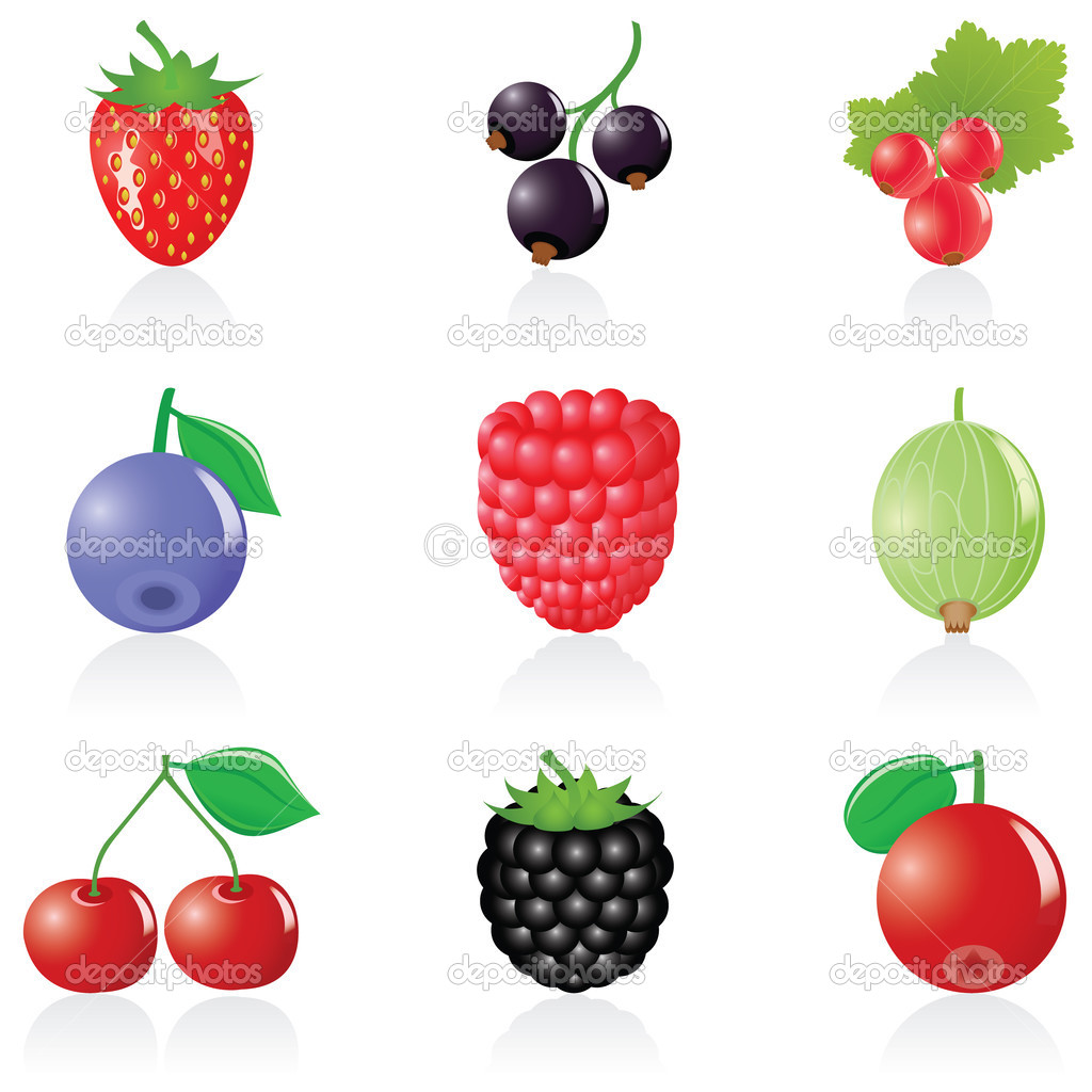 Set with 9 ripe berry icons — Stock Vector #1643339