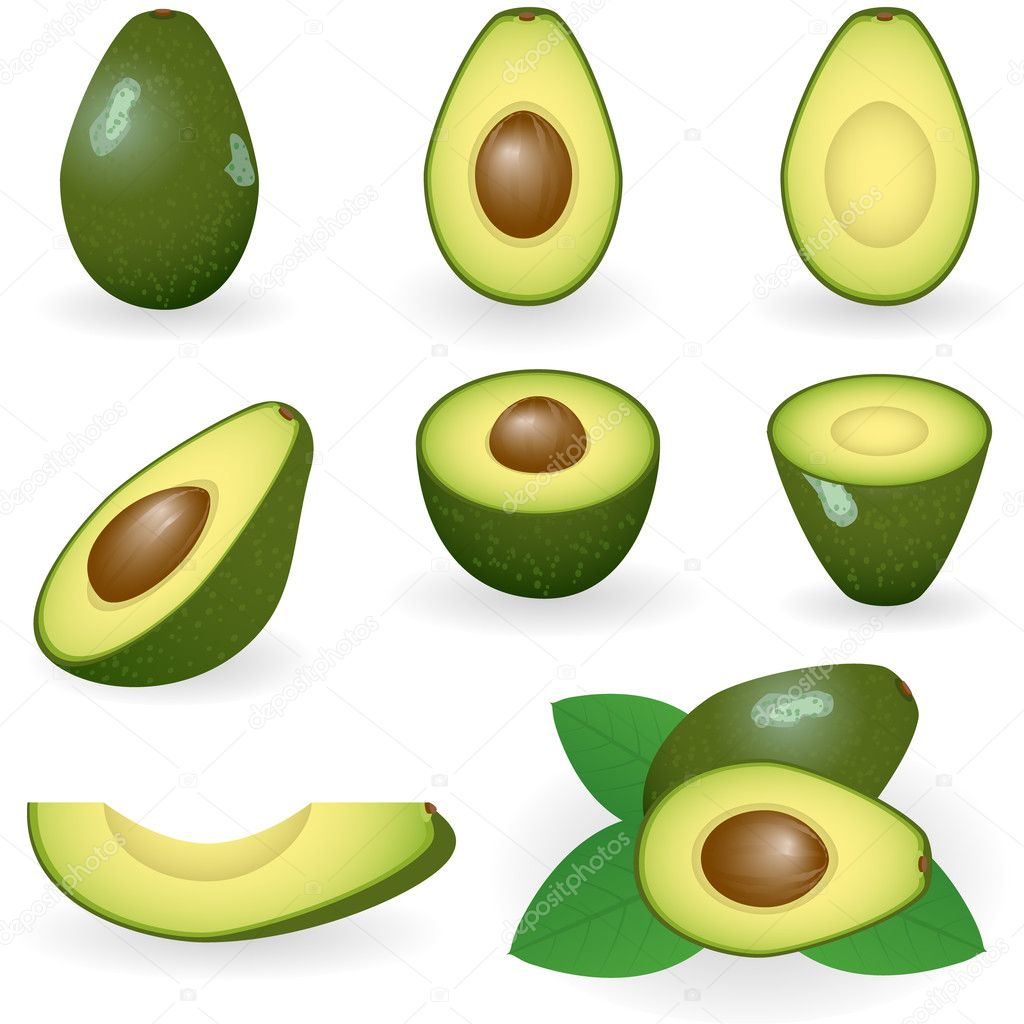 Vector illustration of avocado — Vettoriali Stock  #1643403