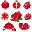 Royalty-Free Stock Vector Image: Pomegranate