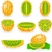 Kiwano — Vector de stock