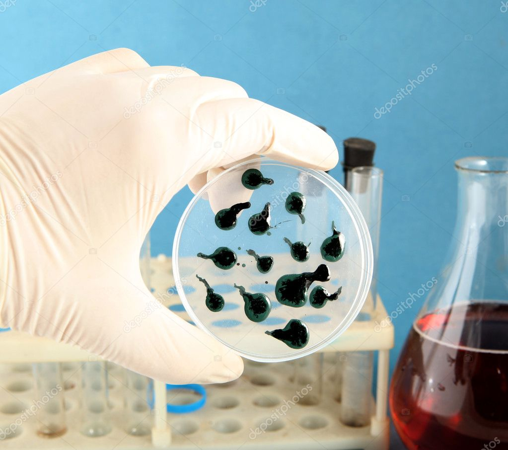 Test virus  Stock Photo #1624549