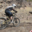Downhill — Stock Photo #1731602