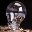 Stock Photo: The bulb