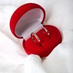 Two wedding rings — Stock Photo #2554087