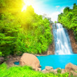Waterfall — Stock Photo #1627878