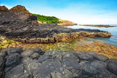 Giant's basalt Causeway. — Stock Photo