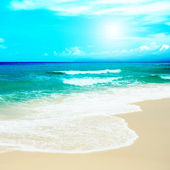 Sandy beach — Stock Photo
