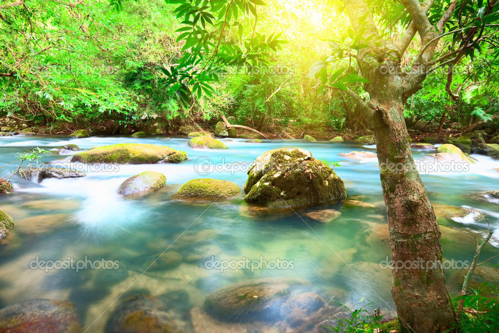 Blue water stream. Phong Nha - Ke Bang National Park. Vietnam  Stock Photo #2575951