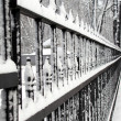 Stock Photo: Winter fence