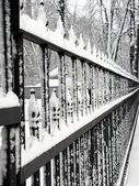 Winter fence — Stock Photo