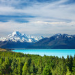 Stock Photo: Mount Cook, New Zealand