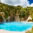 Hot thermal spring, New Zealand — Stock Photo #1593204