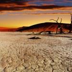 Namib Desert, Sossusvlei, Namibia — Stock Photo