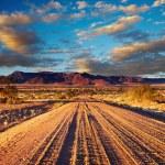 Road in desert — Stock Photo