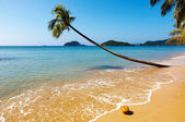 Tropical beach, Thailand — Stock Photo